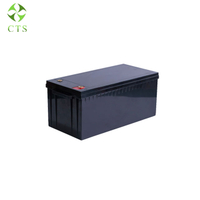 Deep Cycle Rechargeable Lithium Ion Lifepo4 12V 100Ah 200ah 300ah Lithium Battery